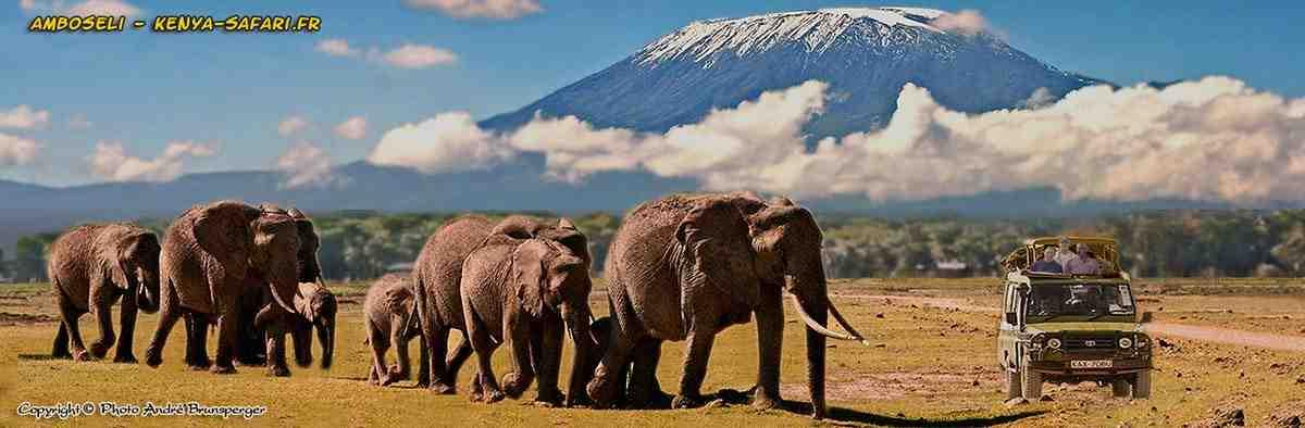 Elephants à Amboseli Kilimanjaro - Conseils photo en safari Kenya