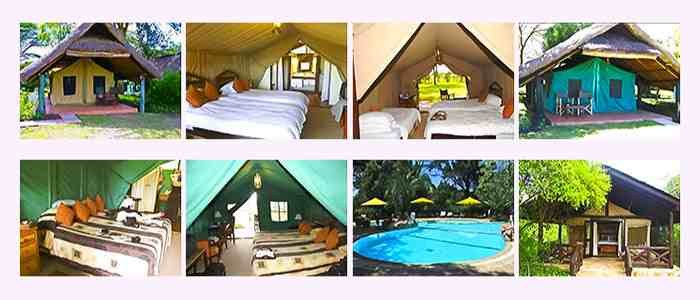 Tented camp en safari kenya