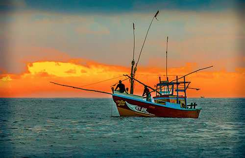 Pêche sportive en mer Thon ou Marlin au Kenya