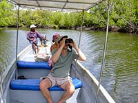 Mangrove de Funzi island