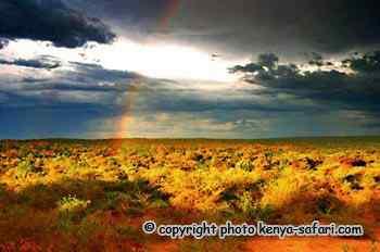 Paysage de pluie- Safari pendant les grandes pluies mousson au Kenya